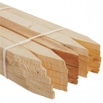 Wood Survey stakes stock photo